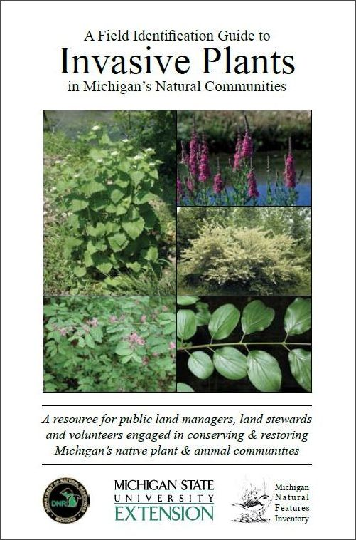 Invasive Plants book cover