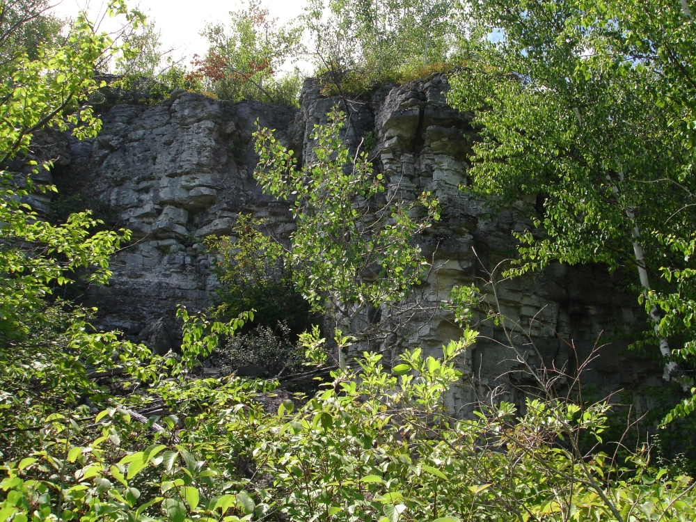 A photo of the Limestone Cliff natural community type