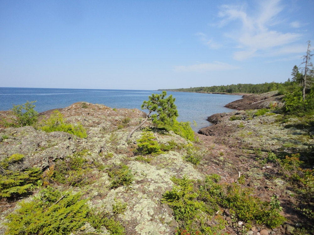 A photo of the Volcanic Bedrock Lakeshore natural community type