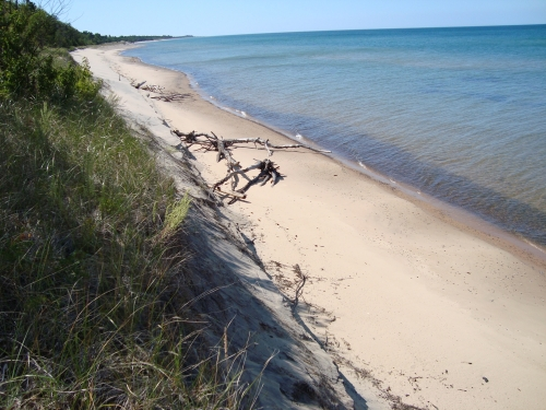 A photo of the Sand and Gravel Beach natural community type