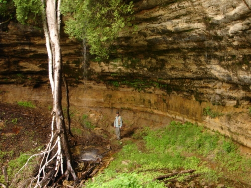A photo of the Sandstone Cliff natural community type